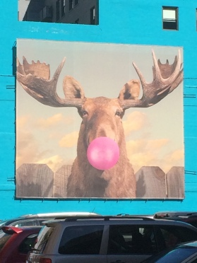 Bubblegum Moose Bubble by Jacob Watts