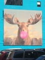 Bubblegum Moose Bubble  by Jacob Watts