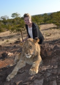Lion Encounter, Zimbabwe