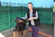 Feeding a cub at Oswald's Bear Ranch, UP, Michigan